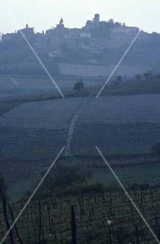 Small wine town of Novello, Barolo, Piedmont, Italy