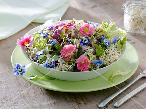 Salad of sprouts, salad leaves and edible flowers