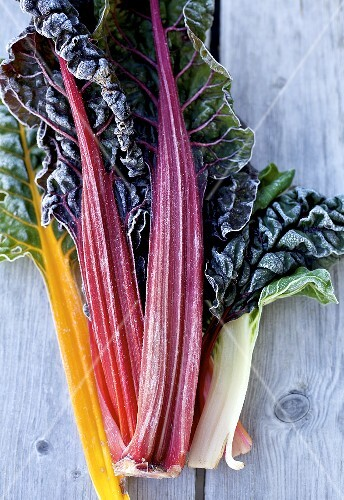 Swiss chard leaves with frost