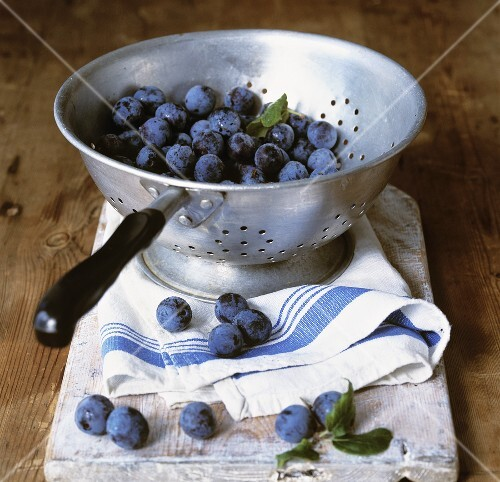 Sloes in a colander