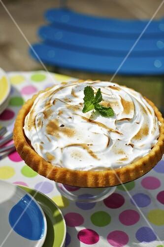 Ice cream cake with meringue