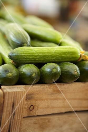 Cucumbers in a crate