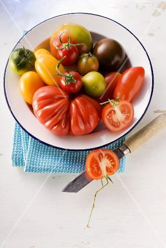 Various types of tomatoes
