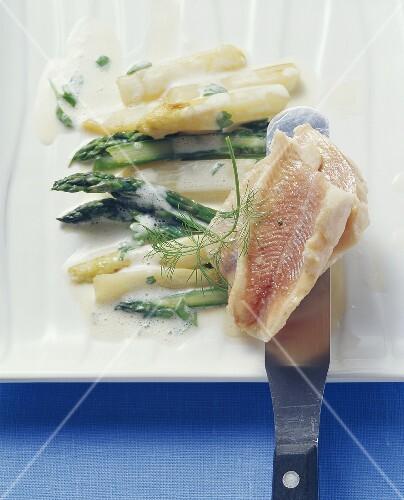 Lukewarm charr on asparagus