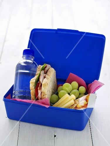 School lunch box (Sandwich, grapes, drink, cheese, muesli bar)