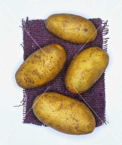Potatoes, variety: Nicola