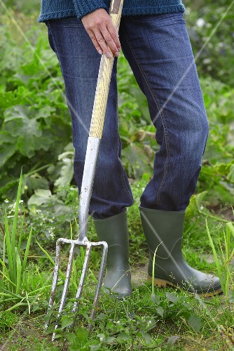 A person in a field with a garden fork