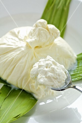Burrata on leaves and spoon