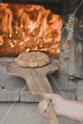 Freshly-baked bread (from wood-fired oven) on baking peel