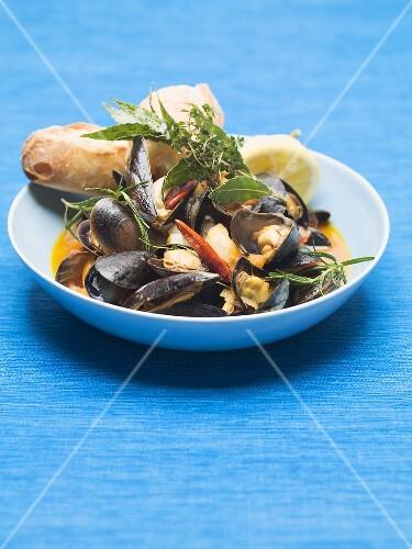 Zuppa di cozze (Mussels in wine broth, Italy)