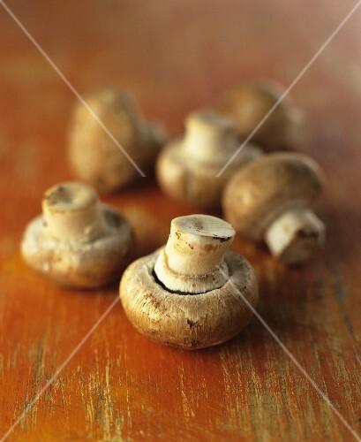 Six mushrooms