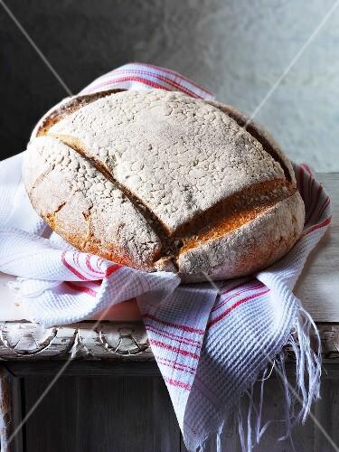 Swiss crusty bread on a kitchen towel