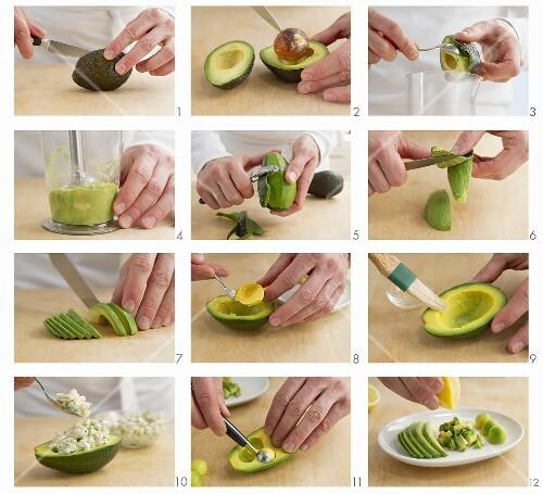 Avocado starters being prepared