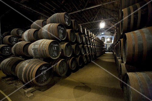 Wine stored in oak barrels in the wine cellar Bodega Alvear in Montilla, Spain