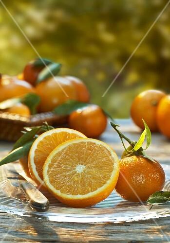 Halbierte Orange und Mandarinen auf einem Glasteller