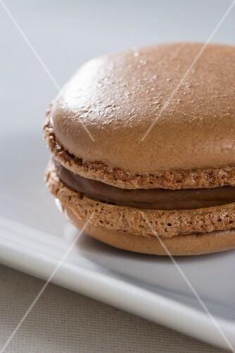 A chocolate macaroon (close-up)