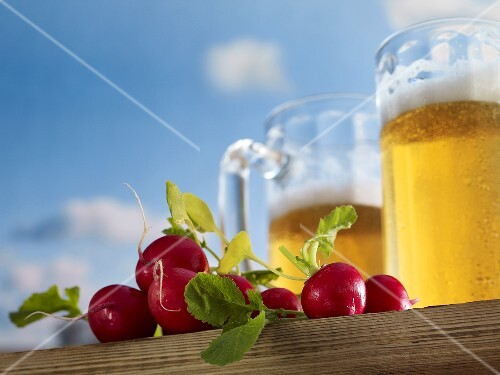 Tankards of beer and radishes against a blue sky