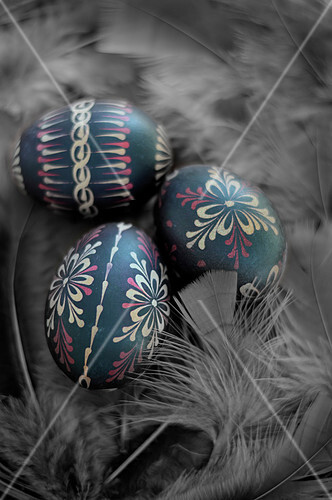 Decorated easter eggs in a feather nest