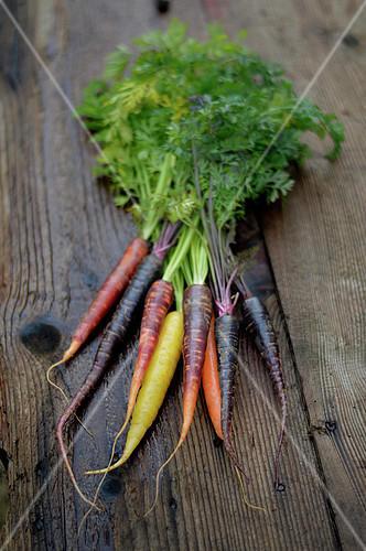 Assortment of different colored carrots