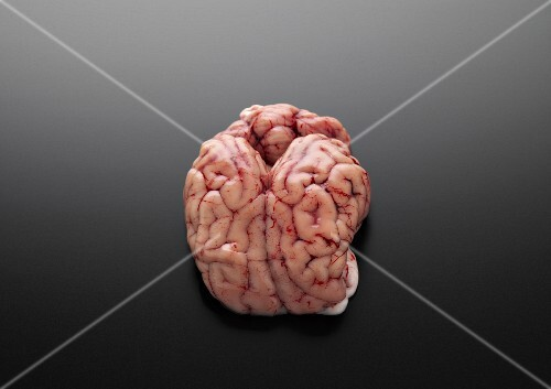 Raw brains