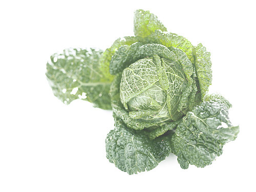 Green curly cabbage on a white background