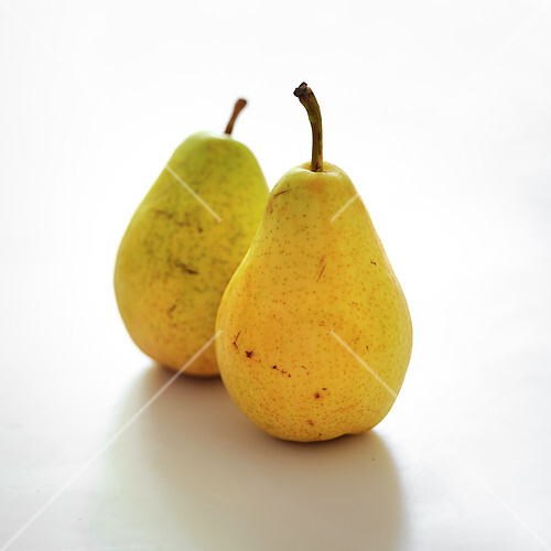 Guyot pears on a white background