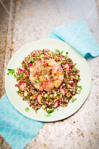 Cod ceviche with quinoa and radishes