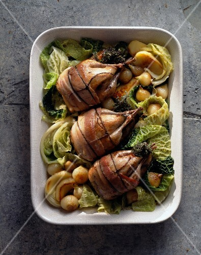 young partridge with bacon and green cabbage (topic: cabbage)
