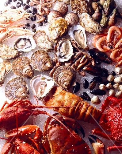 shellfish and seafood