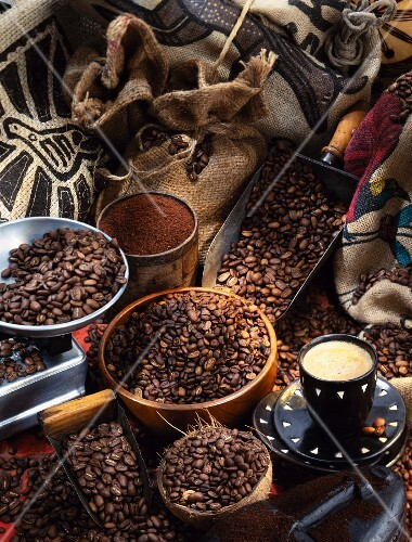 Selection of coffee beans