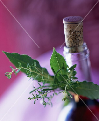 Sprig of herbs and neck of bottle with cork