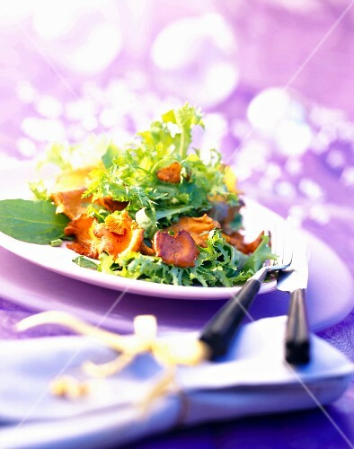 Chanterelle and lettuce salad