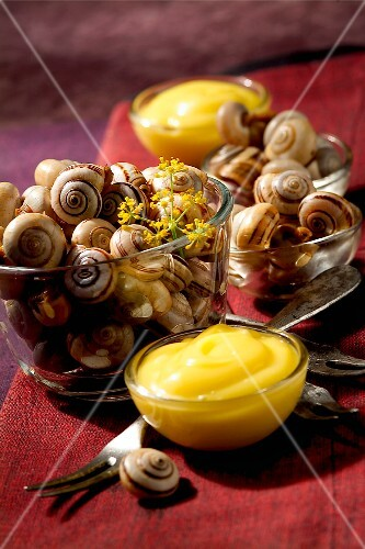 aioli garlic snails (topic: Provence)