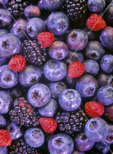summer fruit assortment