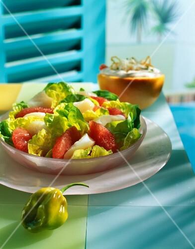 Raw scallop and pink grapefruit salad