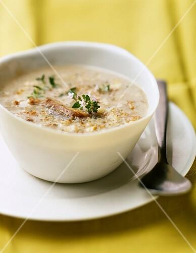 Cream of celery, potato and walnut soup