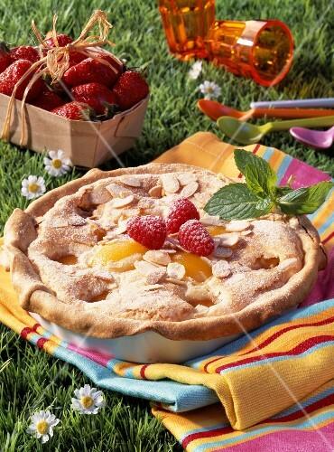Amandine and apricot pie