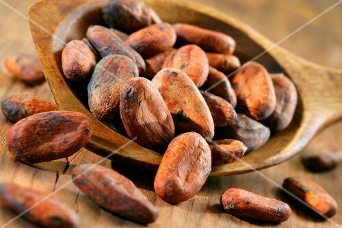 Spoonful of cocoa beans