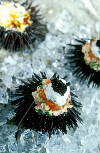 Sea urchins filled with caviar and sour cream