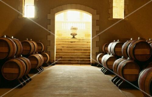 Bordeaux wine cellar