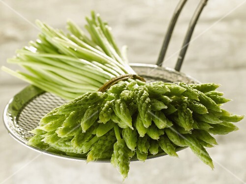 Bunch of wild asparagus on a skimmer
