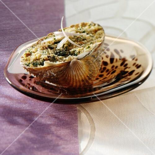 A stuffed clam