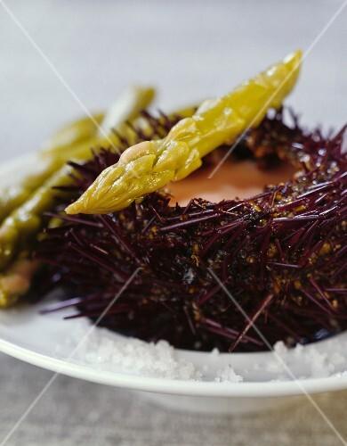 Green asparagus with urchin cream