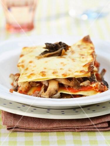 Chicken and forest mushroom lasagnes