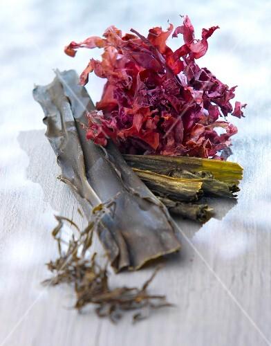 Selection of seaweed