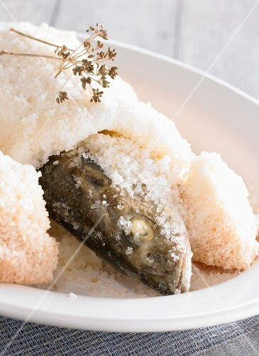 Fish with a salted crust