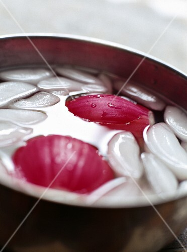 Onions in a pot of iced water