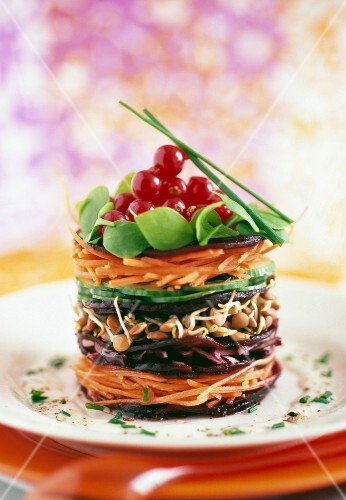 Raw vegetable Mille-feuille
