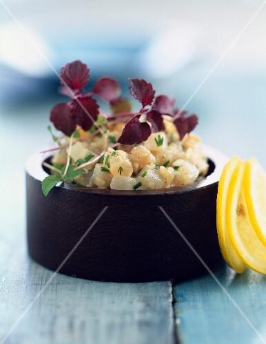 Swordfish and scallop tartare