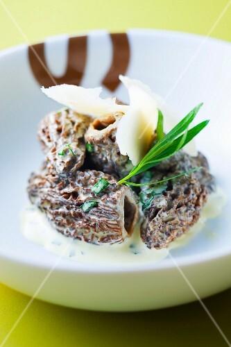Morels in cream sauce and tarragon